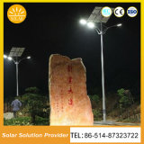 1つのLEDの太陽街灯の2018年の向く製品の高品質の販売すべて