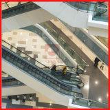 Handelsrolltreppe mit 35 Jobstepp-Breite Vvvf Steuerung des Grad-1000mm