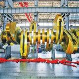 Nuova prestazione di stile albero a gomito d'acciaio del motore di molti generi