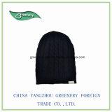 Chapeau chaud de Knit d'Earflap de l'hiver promotionnel d'enfants