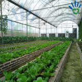 [بّ] [نونووفن] زراعة معمل تغطية مع [أوف] معالجة حديقة تغطية