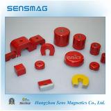 Magnete magnetico personalizzato dell'Assemblea del AlNiCo permanente