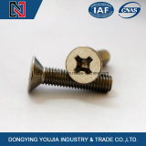 Acier inoxydable DIN965 Cross Recessed Countersunk Head Machine Screw