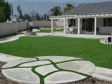 庭およびParksのための完全なLook and Feel Artificial Turf