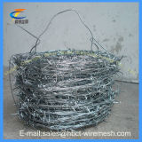 Hot Sales Galvanizado ou PVC Barbed Iron Wire