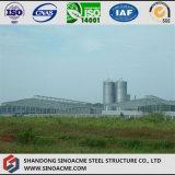 Stahlkonstruktion-Mais, der Werkstatt mit Silo-Stall aufbereitet