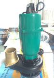 Versenkbare Pumpen-Garten-Pumpe mit Niveauschalter Qdx Serie