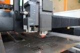 높은 정밀도 선형 자동 귀환 제어 장치 모터를 가진 소형 섬유 Laser 절단기