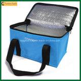 Напольные изолированные мешки Canscooler мешка 6 пикника (TP-CB371)