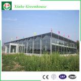 Multi Wand-Dach-Panel-Blatt-Polycarbonat-Blatt-Gewächshaus