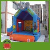 Vente chaude Kids Fun Princess Bouncer château gonflable
