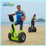 Ecorider 두 배 건전지 2 바퀴 전동기 스쿠터 E 스쿠터 전기 자전거 전기 자전거