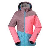 Детский лыжный куртки дамы снега износа на открытом воздухе с низкой цене