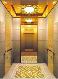 Gearless牽引Vvvfは起点に運転する別荘のエレベーター(RLS-235)を
