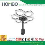 Hot Sale 60W à LED, éclairage jardin Jardin lumière LED solaire