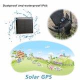 Zonne Macht die GPS Drijver laden voor Vee (V26)