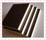 El contrachapado Film-Faced con película negra (construcción encofrado de madera contrachapada)