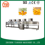 Secagem refrigerando quente da máquina e do ar do preço de fábrica de Commerical da venda