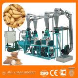 10 toneladas por la pequeña máquina casera de la molinería del trigo del día con precio