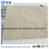 Núcleo de madera/Comercial de madera contrachapada de Okume Bintangor con mejor calidad
