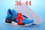 . 2016 voorziet het Nieuwe Menselijke Ras Pharrell Williams X de Loopschoenen van Sporten Nmd, de Goedkope Hoogste Atletische OpenluchtSchoenen van de Tennisschoen van de Opleiding van de Verhoging Mens
