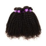 빠른 Shipping Vrigin 브라질 Human Hair Weave, 브라질 Kinky Curly Hair 3PCS, Afro Kinky Curly Human Hair