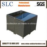 Mobilia esterna di economia di spazio/mobilia esterna impermeabile (SC-B6133)