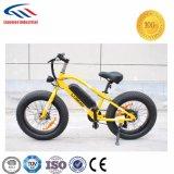 36V 고성능 E 자전거 도매