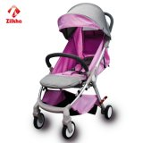 Baby-Spaziergänger in den verschiedenen Farben und in den Arten
