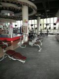 Adjustable Bench Tz-6024/Hot Sale/Commercial Gym Fitness Equipment