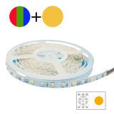 WiFi RGB+White CCT Ajustable LED 지구 빛 옥외 IP67