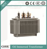 Trasformatore di distribuzione di alta qualità 10kv S11-M con lo standard di TUV
