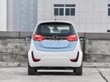 Automobile elettrica di vendita di energia calda di verde con la batteria