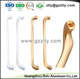 Profili di alluminio della fabbrica per Windows ed i portelli