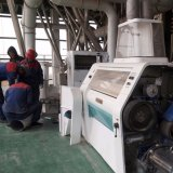 Planta de moedura do moinho do trigo 5-500t/24h automático cheio