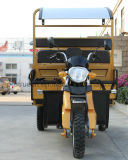 Driewieler de met drie wielen van de Lading van de Motorfiets met Zware Lading