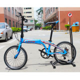 "20 ""Alloy Alloy Frame Folding Bike 8 Speed Shimano Derailleur"