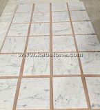 床または壁のクラッディングのためのイタリアカラーラ白いBiancoの大理石の平板