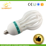 250W Lumière chaude de l'Énergie du feu du tube d'épargne