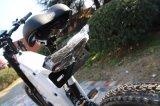 Высокоскоростной безщеточный Bike 3000W зеленой силы мотора взрослый электрический