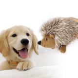 Istrice molle eccellente della Faux-Pelliccia del giocattolo del cane della peluche