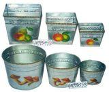 L'étain (HM Flowerpot99504S/3, HM99505S/3)