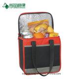 Ökonomisches haltbares Polyester-Bier-Dosen-Doppeltes Zippered Mittagessen-Kühlvorrichtung-Beutel für Erwachsene anpassen