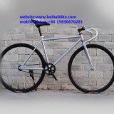 700c Fixie 자전거 조정 기어 자전거