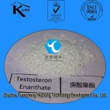 Тестостерон Enanthate порошка стероидов сырцовый для здания мышцы
