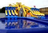 Sosta gonfiabile dell'acqua per divertimento in esterno
