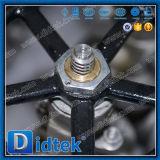 Valvola a saracinesca manuale dell'acciaio inossidabile della flangia della prova di Didtek 100%