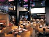 Heißester China-Hersteller-preiswerter Preis verwendete Hotel-Vorhalle-Möbel