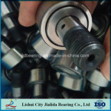 Rodamientos de rodillos de aguja del acero Suj2 de la alta calidad que utilizan (KRV62 CF24)