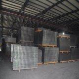 100*100mm revestida de PVC do painel de malha de arame soldado